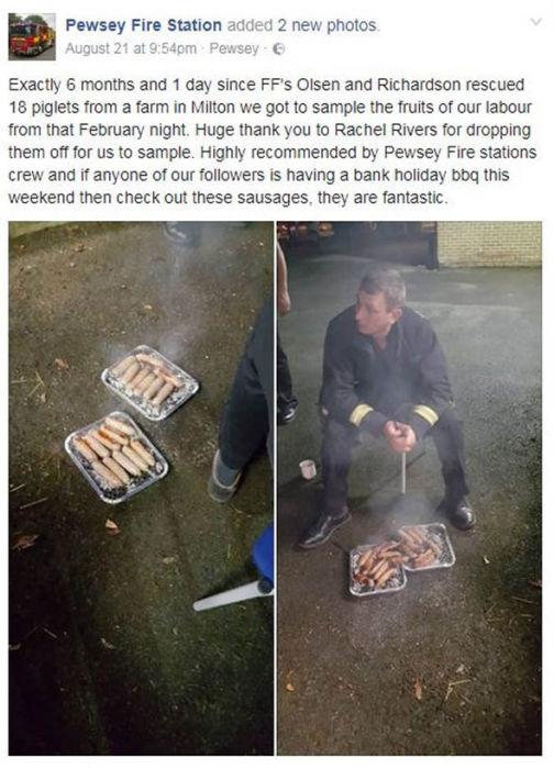 Пост пожарной части в Facebook кому-то показался циничным, другие же заметили, что есть свинину - это нормально.
